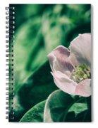 Flora 2821 Spiral Notebook