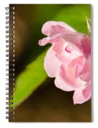 Floral 2 Spiral Notebook