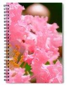Floral 4 Spiral Notebook
