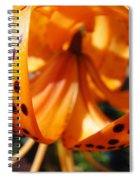 Floral Abstracts Art Prints Summer Tiger Lily Baslee Troutman  Spiral Notebook