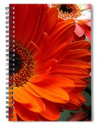 Floral Art Spiral Notebook