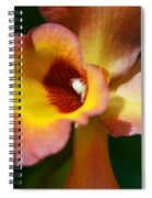 Floral Art - Intimate Orchid 3 - Sharon Cummings Spiral Notebook