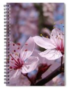 Floral Art Pink Spring Blossoms Prints Blue Sky Baslee Troutman Spiral Notebook