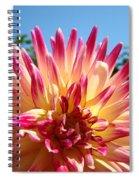 Floral Art Pink Yellow Dahlia Flower Baslee Troutman Spiral Notebook