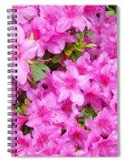 Floral Art Prints Pink Azalea Garden Landscape Baslee Troutman Spiral Notebook