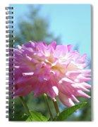 Floral Art Prints Pink White Dahlia Flower Pastel Baslee Troutman Spiral Notebook
