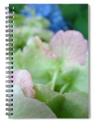 Floral Artwork Hydrangea Flowers Soft Nature Giclee Baslee Troutman Spiral Notebook