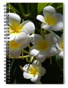 Floral Beauties Spiral Notebook