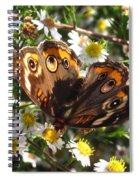 Floral Buckeye Spiral Notebook
