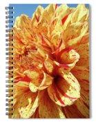 Floral Dahlia Flower Art Print Orange Red Dahlias Baslee Spiral Notebook