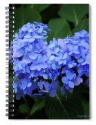 Floral Duet Spiral Notebook