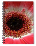 Floral Eye Spiral Notebook