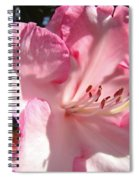 Floral Fine Art Prints Pink Rhodie Flower Baslee Troutman Spiral Notebook