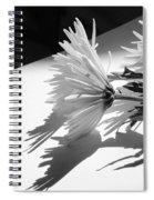 Floral No2 Spiral Notebook