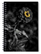 Floral October Zinnia End Of Season Sc 02 Vertical Spiral Notebook