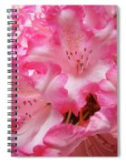Floral Rhodies Flowers Pink White Art Baslee Troutman Spiral Notebook