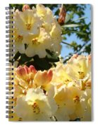 Floral Rhododendrons Fine Art Photography Art Prints Baslee Troutman Spiral Notebook