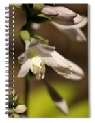 Floral Sideview Spiral Notebook