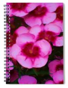 Floral Study In Red And Pink Spiral Notebook