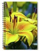 Floral Sunshine Spiral Notebook