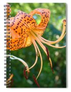 Floral Tiger Lily Flower Art Print Orange Lilies Baslee Troutman Spiral Notebook