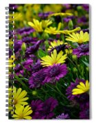 Floral Treasure Spiral Notebook