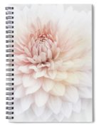 Floral Watercolor Background Spiral Notebook