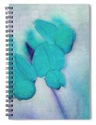 Florentina - At3v3b Spiral Notebook
