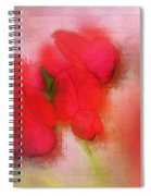 Florentina - J38 Spiral Notebook