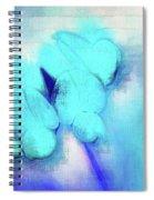 Florentina - Jbluz01 Spiral Notebook