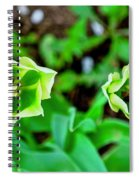Florescent Green In Stereo Spiral Notebook