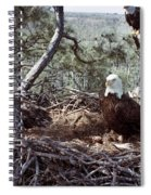 Florida: Bald Eagles, 1983 Spiral Notebook