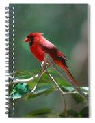 Florida Cardinal Spiral Notebook