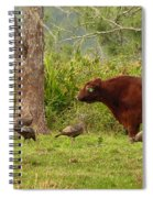 Florida Cracker Cows And Osceola Turkeys #2 Spiral Notebook