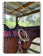 Florida Cracker Horse Spiral Notebook