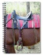 Florida Cracker Saddle Spiral Notebook