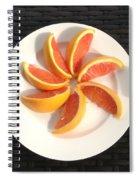 Florida Fruit Spiral Notebook