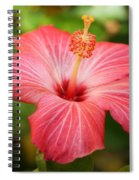 Florida Hibiscus Spiral Notebook