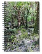 Florida Landscape - Lithia Springs Spiral Notebook