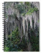 Florida Mossy Tree Spiral Notebook