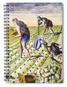 Florida Natives, 1591 Spiral Notebook