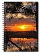 Florida Pine Sunset Spiral Notebook