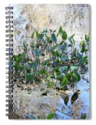 Florida Pond Spiral Notebook