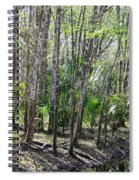 Florida Riverbank  Spiral Notebook