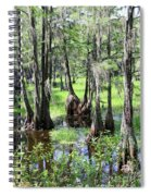 Florida Swamp Spiral Notebook