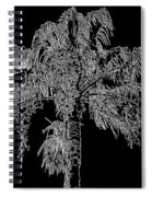 Florida Thatch Palm In Black And White Spiral Notebook