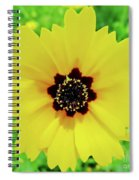 Florida - Yellow - Wildflower Spiral Notebook
