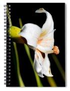 Floss Silk Bloom Spiral Notebook
