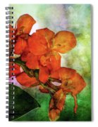 Flow 2339 Idp_2 Spiral Notebook