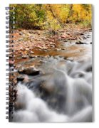 Flow In Sedona Spiral Notebook
